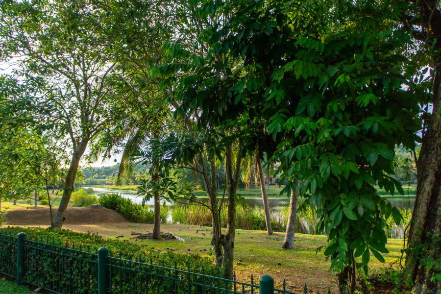 Laguna Village - вид из сада на озеро